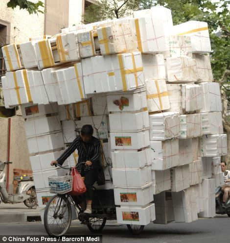 Heavy Load Transport System In China