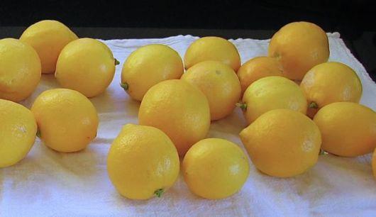 Amazing Frozen Lemons