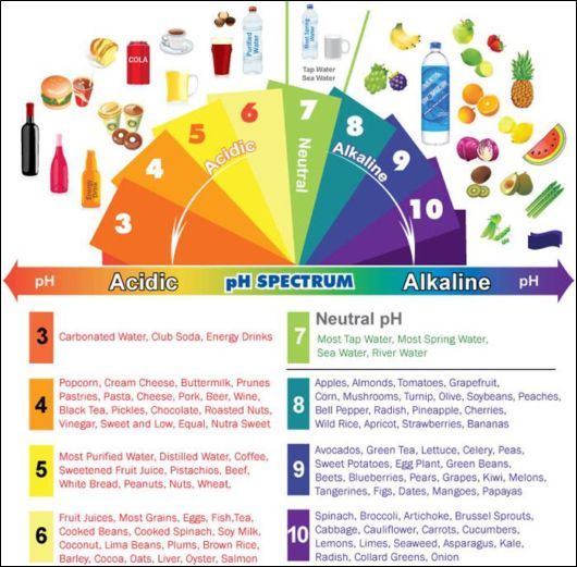 How Important Is A Balanced pH Level