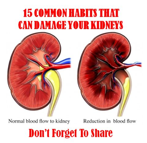 15 Common Habits That Can Damage Your Kidneys