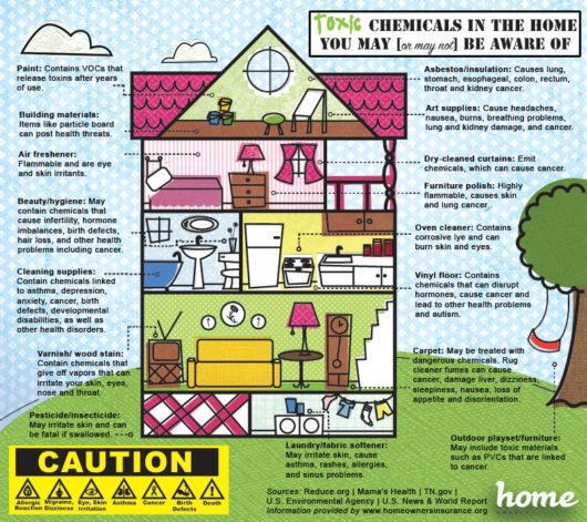 Top 10 Worst Toxins In Your Home