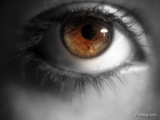Awesome Eyes Collection