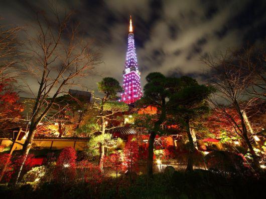 A Wonderful Trip To Tokyo, Japan