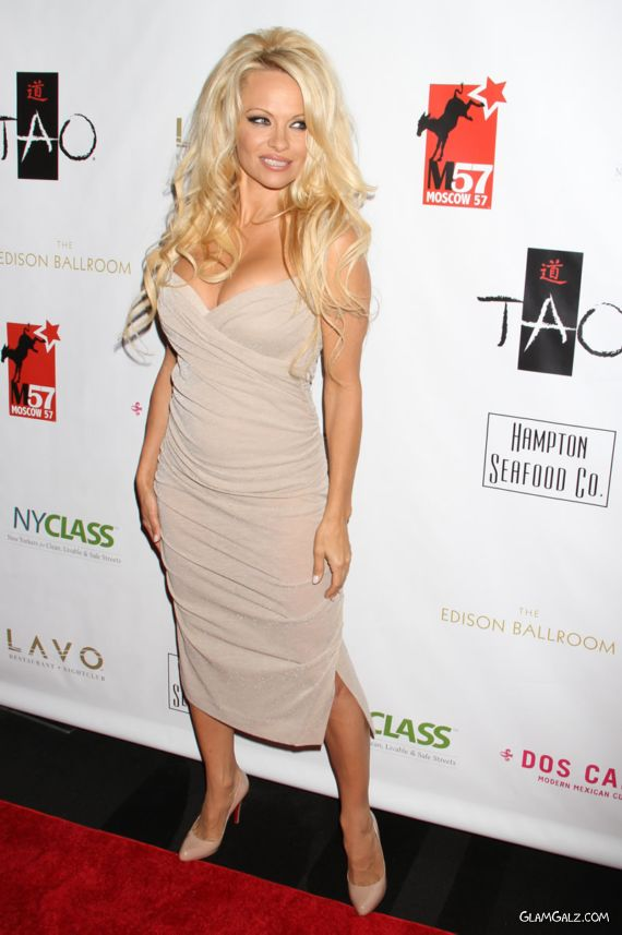 Gorgeous Pamela Anderson In A Party Gown